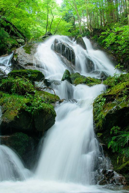 Waterfall 生田の滝
