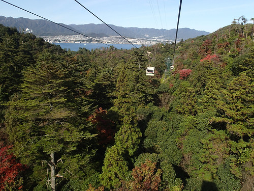 Miyajima Island forest view from Ropeway Car