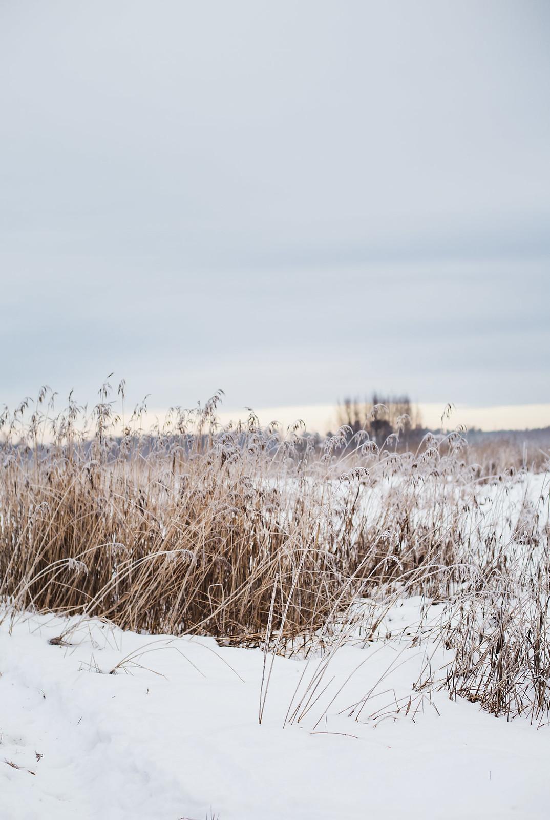 Snö och frost i november
