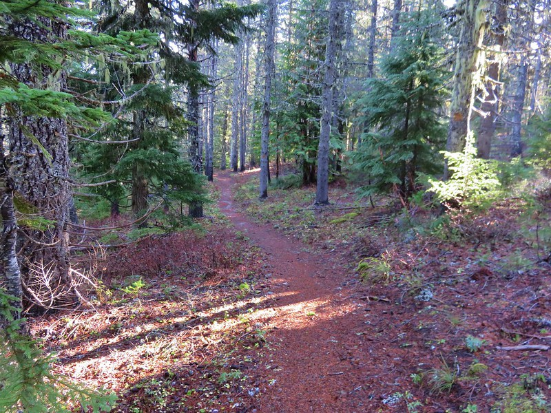 Palmateer Trail