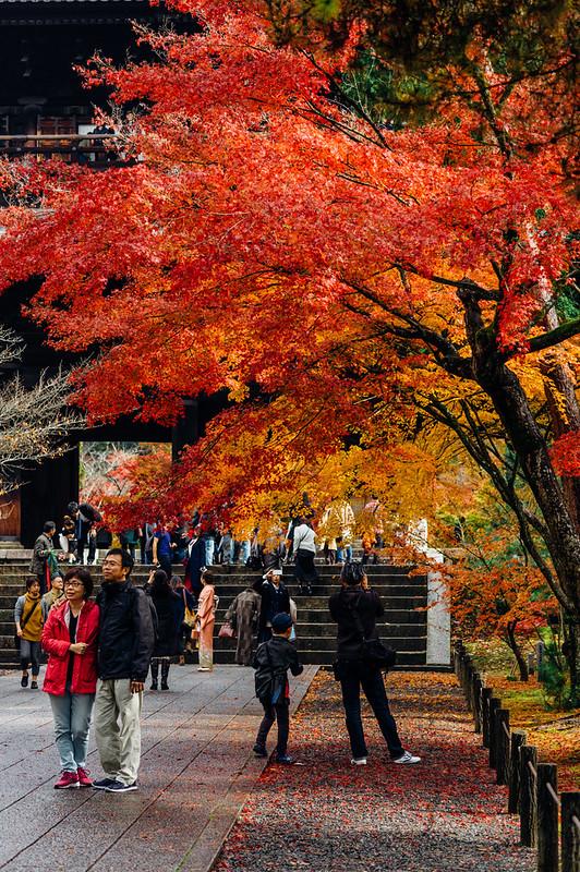 Kyoto_Nanzenji_04
