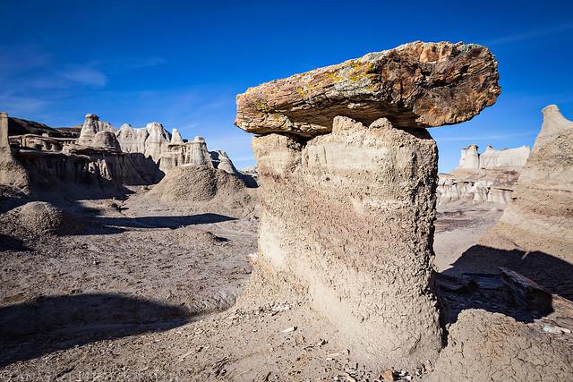 Petrified Pedestal