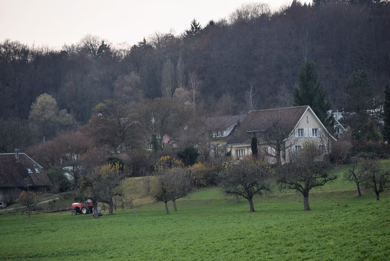 Feldbrunnen village 27.11 (5)