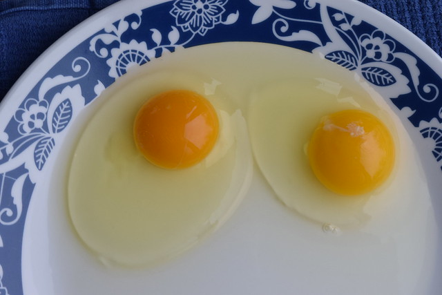 Farm Egg Vs. Mass Produced Egg