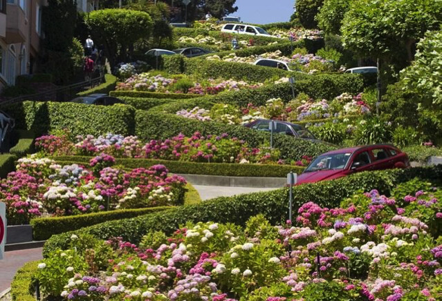 tour bờ Tây nước Mỹ đường hoa Lombard