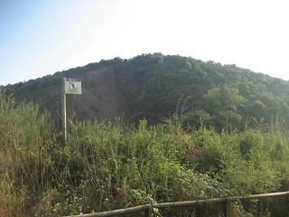 Ladera del volcán Croscat, en La Garrotxa.