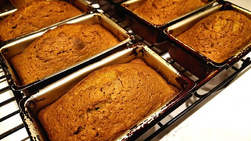 Our pumpkin loaves are back. Get yours today! ❤