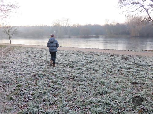 Raureif am zugefrorerenen Teich