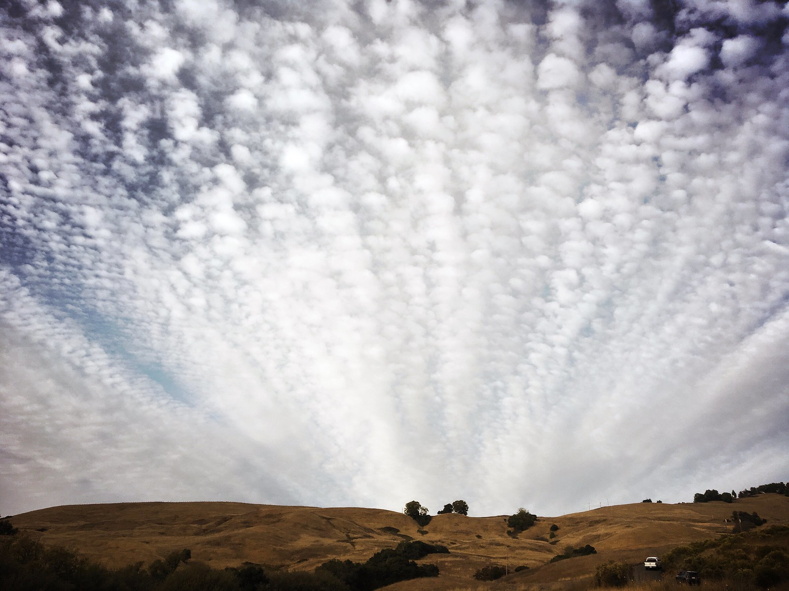 HUGE mackerel skies -- rain's in the forecast... | by lawatt