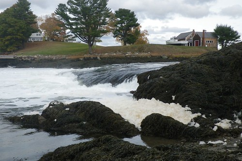 Reversing Falls at low tide