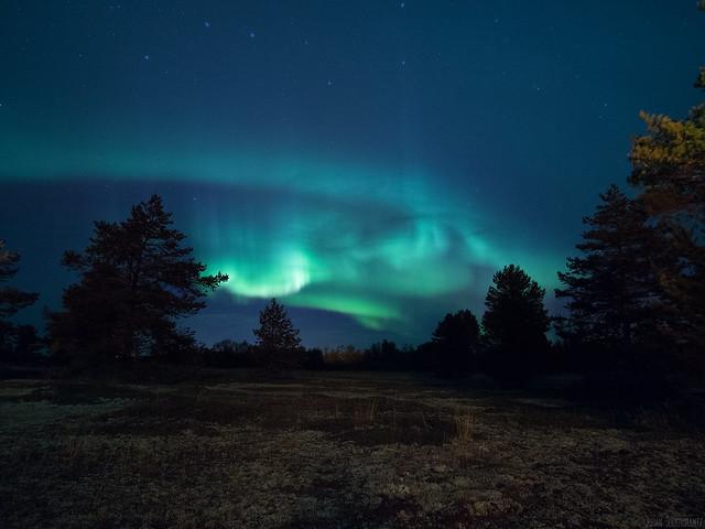 Aurora moorland