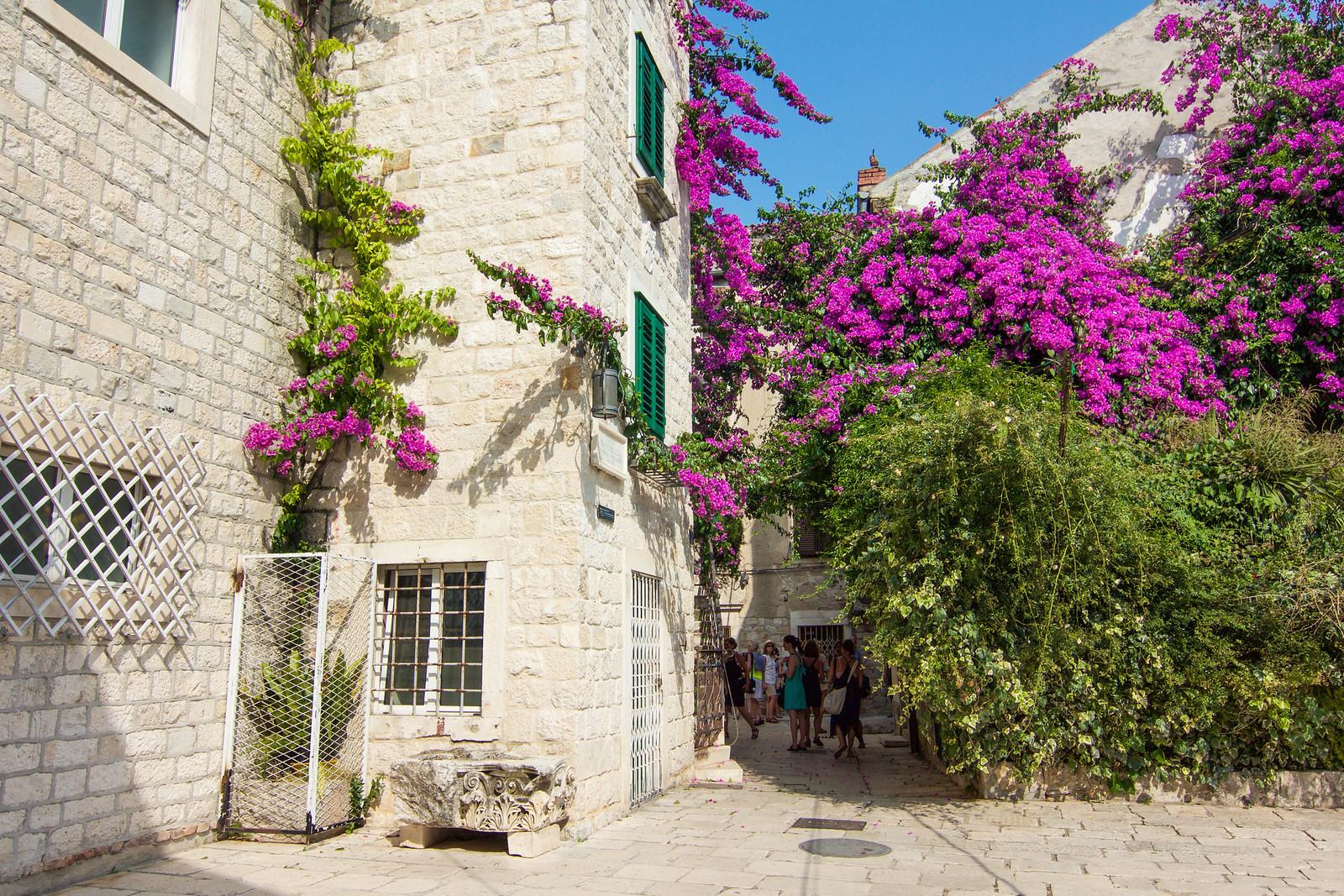 A Guide to Savoring Split, Croatia   Adelante