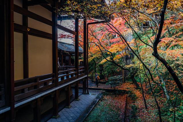 Kyoto_Eikando_13