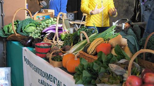October 22, 2016 Mill City Farmers Market