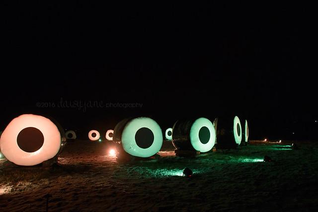 bruce light at arboretum-26web