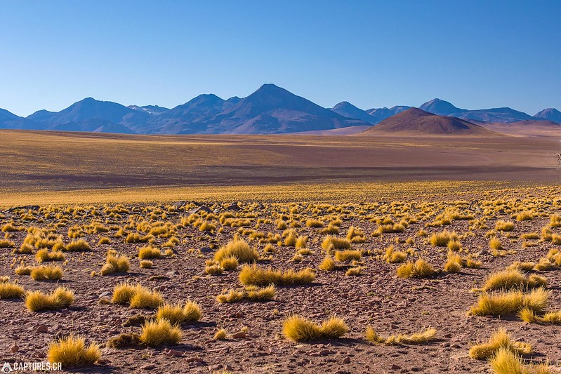 Desert - San Pedro de Atacama