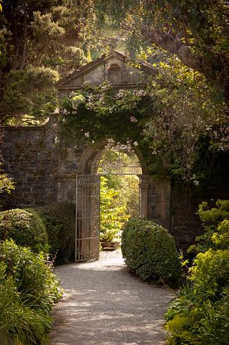 Secret Garden | by claero
