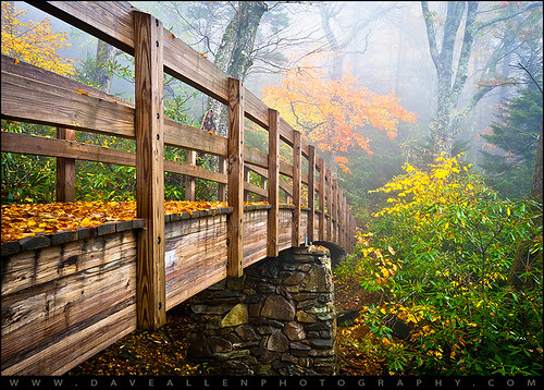 Tanawha Trail Foot Bridge - Rough Ridge Autumn Foliage NC | by Dave Allen Photography