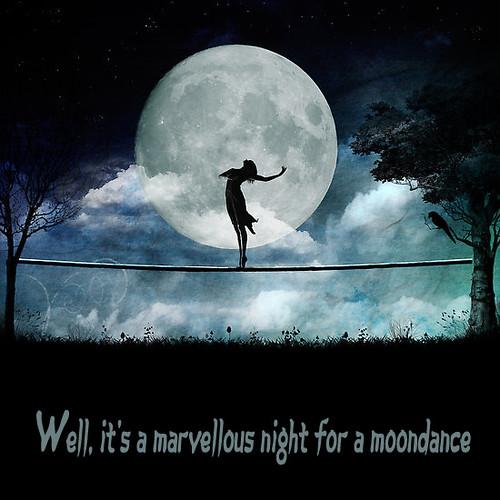 Moondance Flickr Photo Sharing