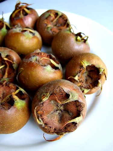 medlars 2 | by aforkful