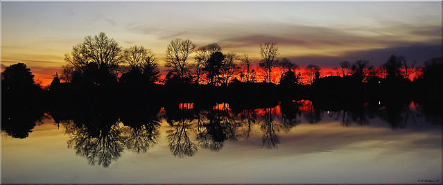 Sunset Silhouette at Hearns Pond