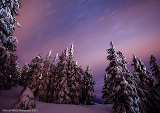 Snowy Nights | by Darren White Photography