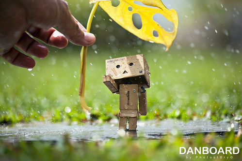 hi... I am Danboard™ | by Photost0ry© | by hanks studio