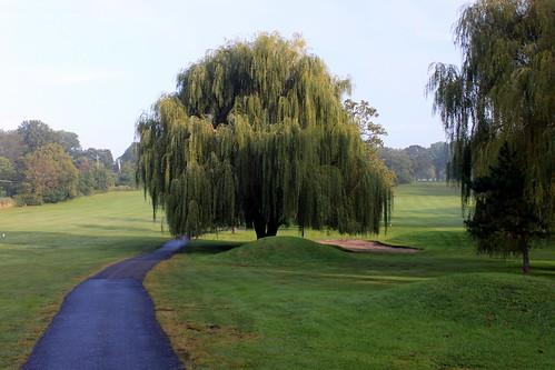 Pictures Of Latourette Golf Course 7