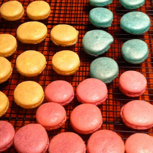 Friendly assistance for a friend! Her macaroon shells. Aren't they pretty colors ? | by amyruthbakes