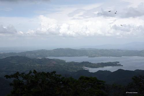Tierra alta del cacao, el diviso  (5)
