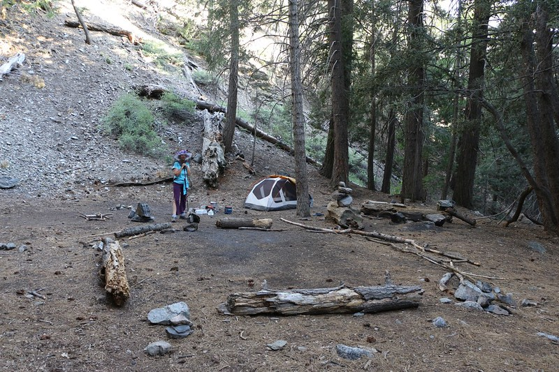 Our tent at Alger Creek Camp