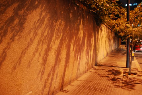 Night shadow | by Muslima2006