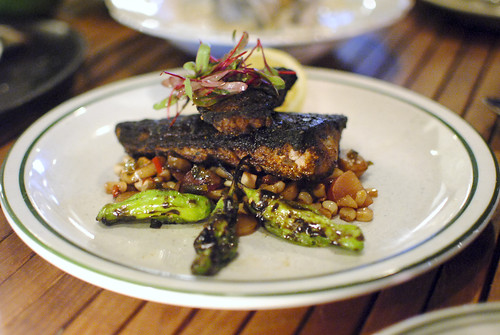 blackened local sea bass sweet corn succotash, blistered shishito peppers | by Darin Dines