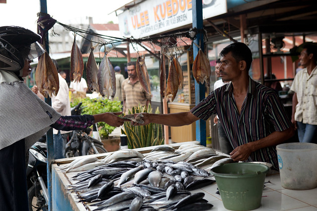A roadside fish stall. Aceh, Indonesia. Photo by Mike Lusmore, 2012