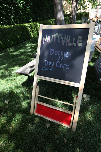 The Muttville Senior Dog Rescue daycare at Giving Back at Jordan. | by jordanwinery.com