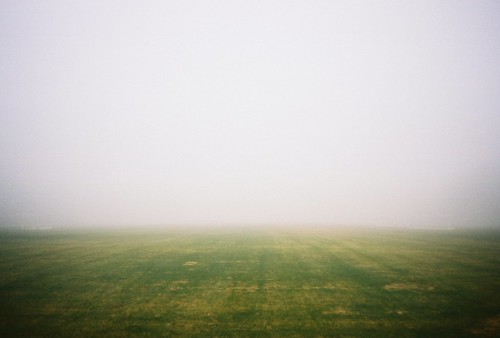 Foggy Field | by Robert Ogilvie
