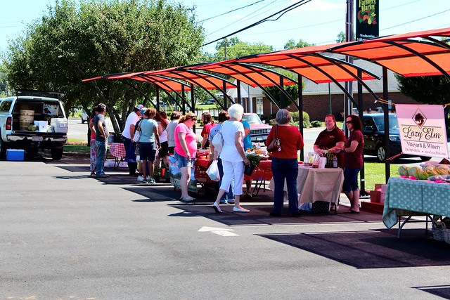 Have Fun, Save Money & Live Longer at the Mocksville Farmers Market every Wednesday