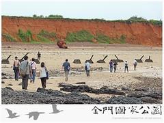 金門國家公園海岸環境教育(0604)-08