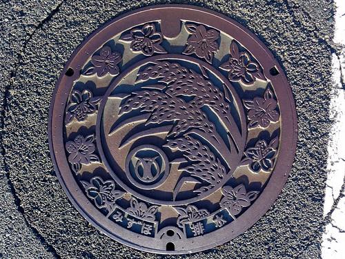 Mizuho Shimane, manhole cover (島根県瑞穂町のマンホール)