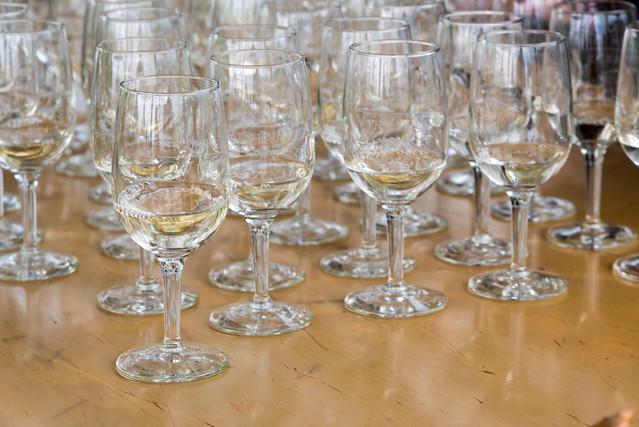 2016 Young Alumni Wine Tasting