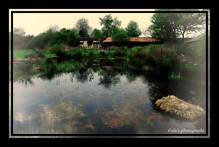Forest Farm - New Pond. | by Gale's Photographs