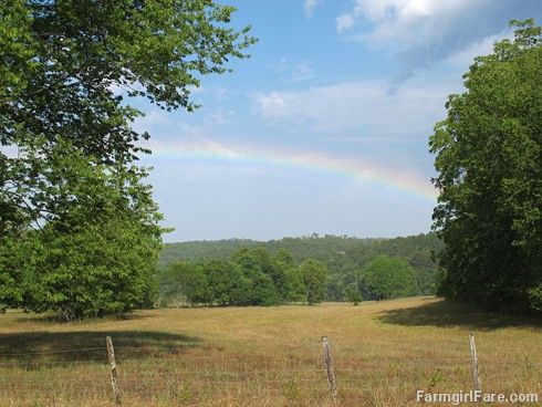 (21-1) Rainbow in the hayfield after a brief rain Sunday afternoon | by Farmgirl Susan