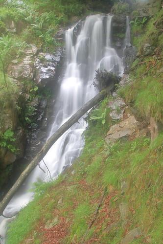 Parque natural de #Gorbeia #Orozko #DePaseoConLarri #Flickr -122