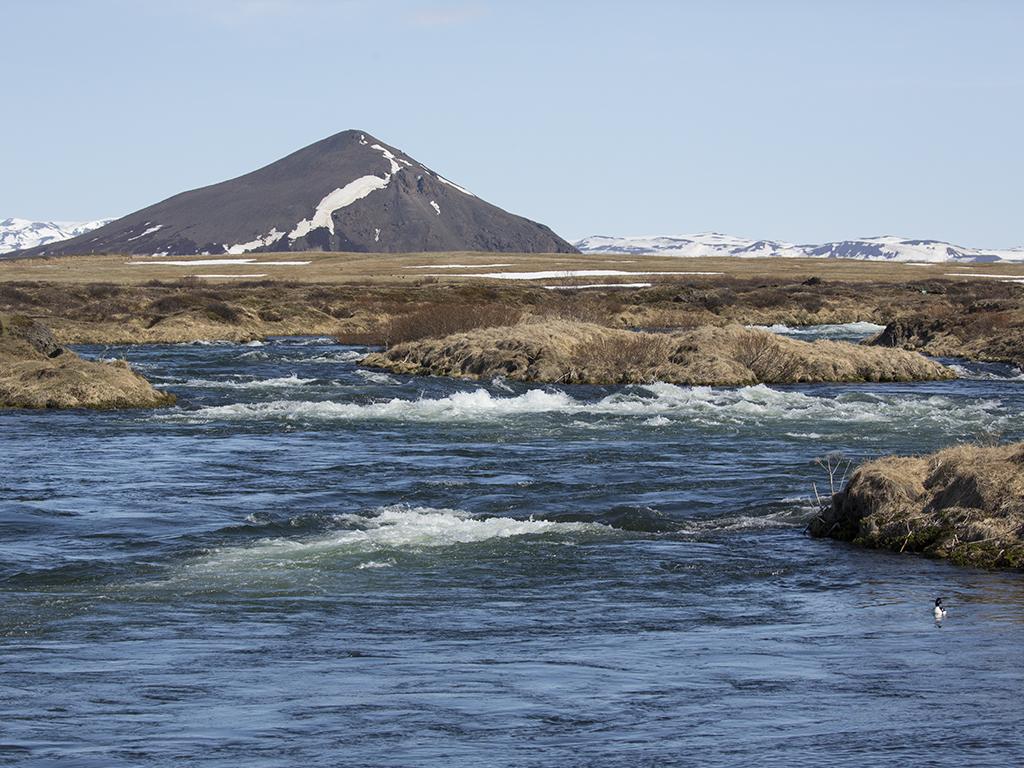Laxa river, Myvatn. Iceland