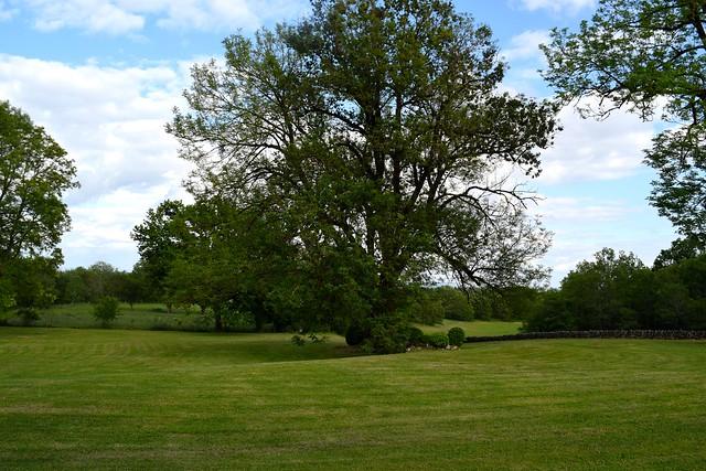 Lawns at Manoir de Malagorse | www.rachelphipps.com @rachelphipps