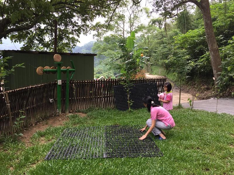 舖設保護草地的地墊