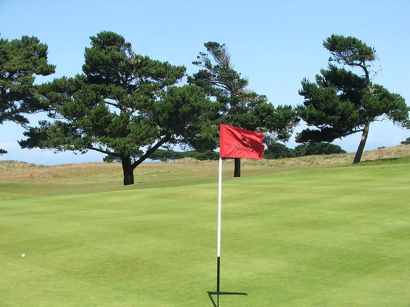 bd stiff flag