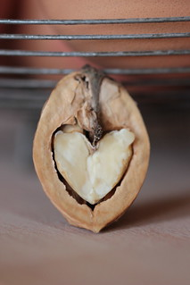 we ♥ walnuts over here | by Cozy Memories