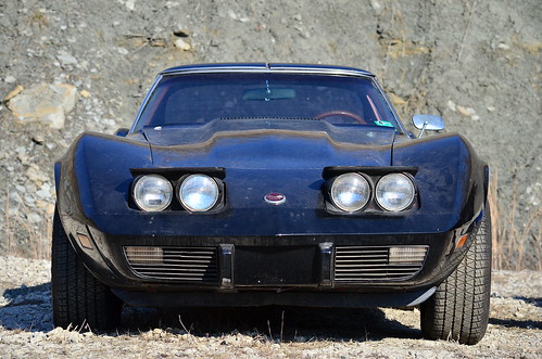 Neglected 76 Corvette | by scott597