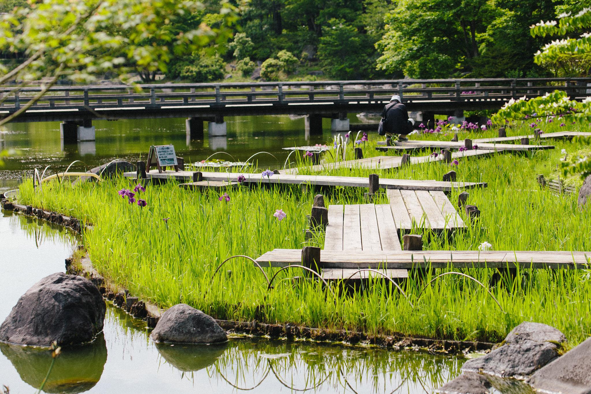 2016-05-31 昭和記念公園 001-5